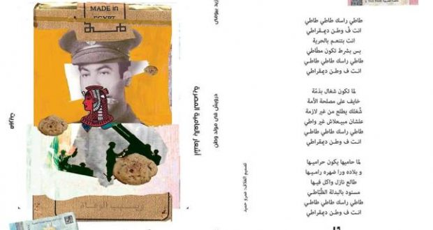قراءة فى ديوان درويش فى مولد وطن للشاعر د/ أبو زيد بيومى