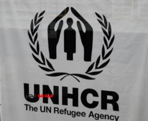 الأمم المتحدة: الفارون بشرق سوريا بحاجة لموقع مؤقت على الطريق لمخيم الهول - مبدعو مصر