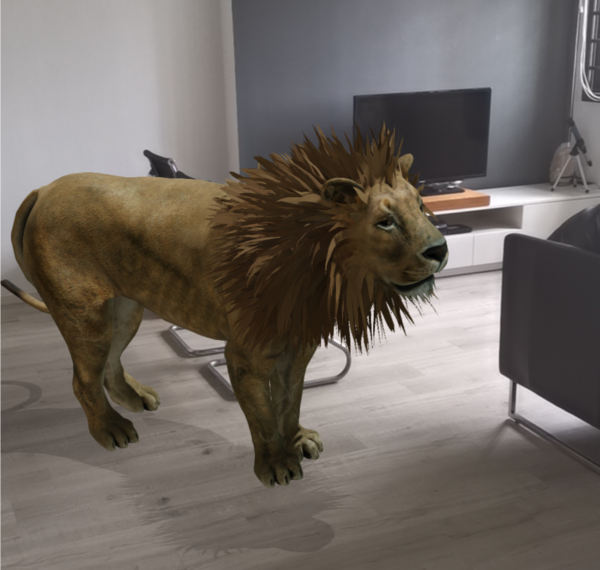 حيوانات 3d