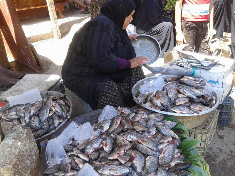 اسعار الاسماك اليوم الخميس