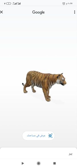 اسد View in 3D اسد ثلاثي الابعاد