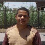 عبد القوي محمد عبد القوي